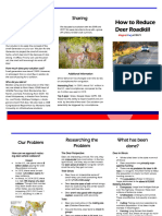 animal allies project tri-fold
