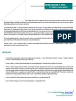 2013 Informe Varicela OMI AP