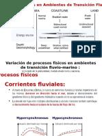 Variación de Procesos Fisicos en Ambientes de Transicion Fluvio-Mareal, Christian Romero, 2016