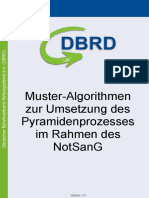 DBRD Pyramidenprozess Notfallsanitäter
