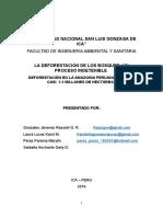 Universidad Nacional San Luis Gonzaga de Ica (1)