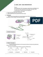 1.3.Dna Gen Dan Kromosom