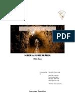 informe_inicial_tindividual.1.docx