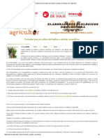 Consejos Para El Cultivo de Hierbas o Plantas Aromáticas _ ECOagricultor