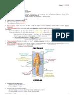 01 - Clase 1 - 11·03 [Hombre Anatómico]