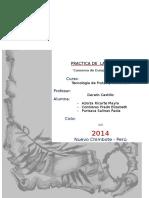 Conserva de Durazno en Almíbar