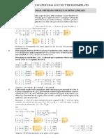 Algebra 2ccss Problemas Sel 2009 Resoltos2