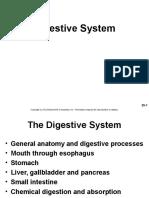 Anatomi Sistem Digestiva.ppt