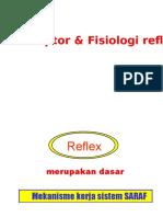 Sistem Refleks & Sistem Saraf Otonom