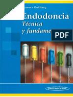 124001239 Endodoncia Tecnicas y Fundamentos