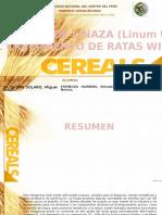 e1 Espinoza Huaman Betzabe Cereales