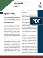 Artigo2 Perfil Gerente Projetos
