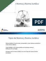 Tipos de Normas y Norma Jurídica