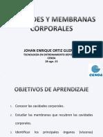 3. CAVIDADES CORPORALES_0 (1).pdf