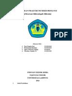 LAPORAN PRAKTIKUM MIKROBIOLOG1
