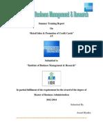 169023904 American Express Summer Internship Report Docx (1)