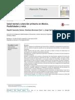Salud Mental y Atención Primaria en México. Posibilidades y Retos