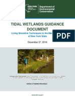 DEC Living Shoreline Guidance Document - Draft Dec. 2016