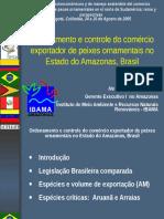 Exportações de Peixes Ornamentais Pelo Estado Do Amazonas