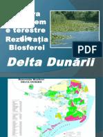 Rezervaţia Biosferei Delta Dunării