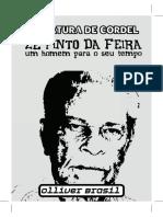 Ze Pinto Da Feira