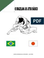 Apostila de Brazilian Jiu Jitsu Basico