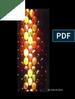 PDF Ergonom Piscolor