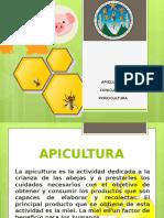 Apicultura, cunicultura, porcinocultura