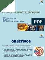 CULTURA DE SEGURIDAD Y SUSTENTABILIDAD.pdf
