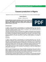 A Look at Cassava Production in Nigeria