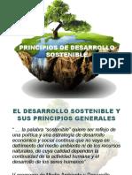 Tema 2principios de Desarrollo Sostenible