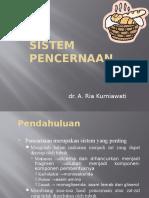 Sistem Pencernaan 4