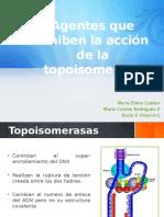 Agentes que inhiben la acción de la topoisomerasa