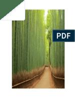 Gambar Hutan Bambu Yg Asri