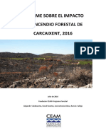 Informe CEAM Incendio Forestal Carcaixent 16/06/2016