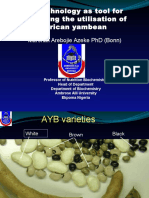 Tools for African Yambean.pptx