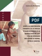 Tesis remorini salud guarani.pdf
