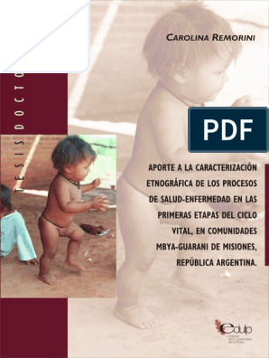 Guarani Tesis Tesis pdf Salud Remorini xthQrCsd