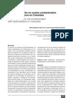 Dialnet-BiorremediacionEnSuelosContaminadosConHidrocarburo-5344956
