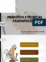 Aula 03 - Principios e Tecnicas