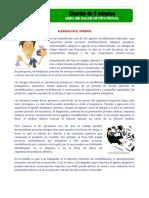Charla 5 minutos-Alergias laborales.pdf