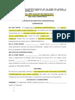 Modelo Contrato Carta Circular 06 03 DJ