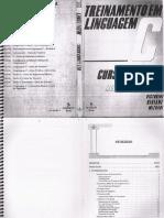 Treinamento em Linguagem C módulo 1 - Victorine Viviane Mizrahi.pdf