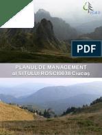 Ciucas - Plan de Management