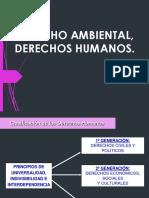 SESION 1 _DERECHOS HUMANOS Y DERECHO AMBIENTAL.pdf