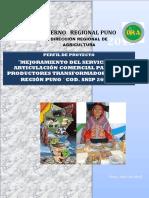 TRANSFORMADORES SNIP.pdf