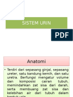 Sistem Urin