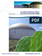 140527 Fasciculo BioWorks.pdf