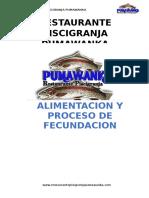 alimentacionyprocesodefecundacion-131011113419-phpapp02
