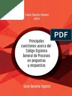 Principales Cuestiones Acerca Del Código Orgánico General de Procesos
